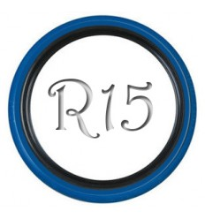 Флипперы Twin Color black-blue R13 (4 шт.)