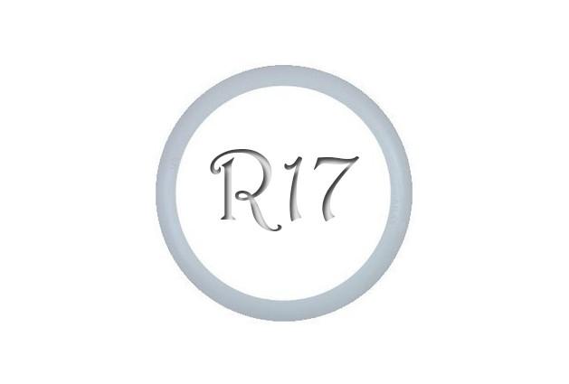 Флиппер R17-Moto Ultra (1шт.)