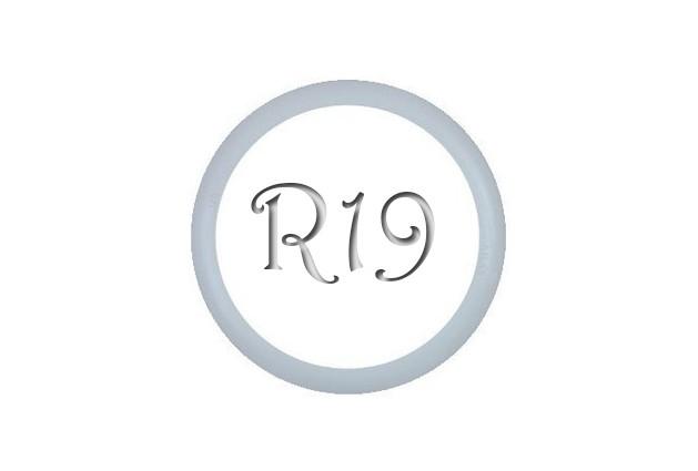 Флипперы Moto R19 (1шт.)