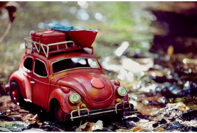 Volkswagen Beetle с лодкой