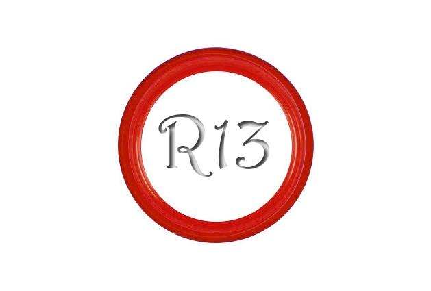 Флипперы Color red R13 (1 шт.)