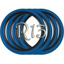 Флипперы Twin Color black-blue R13 (4 шт.)