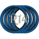 Флипперы Twin Color black-blue R14 (4 шт.)