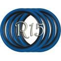 Флипперы Twin Color black-blue R15 (4 шт.)